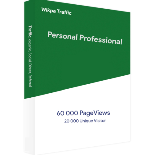 Website Traffic Personal Professional