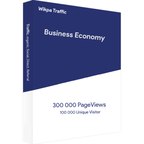 Website Traffic Bussines Economy